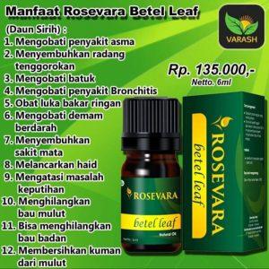 rosevara betel leaf essential oil, minyak esensial